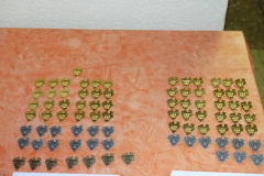 87 Auszeichnungen für die Landessieger, die Auszeichnungen für die Bundessieger sind leider nicht rechtzeitig eingetroffen.
